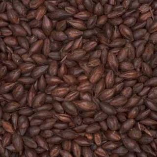 Ječmeni čokoladni slad CARAFA® tip3